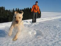 Winter_sports